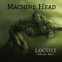 Cover Machine Head - Locust [Advance Mix]